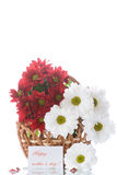 Red and white chrysanthemums in a basket Royalty Free Stock Image