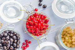Red white currants gooseberries jars preparations Royalty Free Stock Images