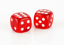 Red and white dices Stock Image