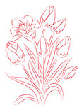 Red and white drawing Stock Photo