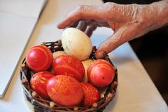 Red and white easter eggs in a small woven basket. Older woman`s hand taking easter traditional eggs red and white  out of a small woven basket Royalty Free Stock Image