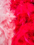 Red white feathered background. Royalty Free Stock Photo