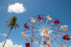 Red and white ferris wheel and coconut  tree against a sky Stock Image