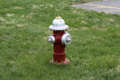 Red and white fire hydrant Stock Photography