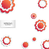 Red and white floral paper background. Spring background with beautiful colorful flower. Vector illustration template.banners.Wall Royalty Free Stock Photo