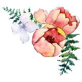 Red and white flowers. Isolated flower illustration element. Background set. Watercolour drawing aquarelle bouquet. Red and white flowers. Floral botanical vector illustration