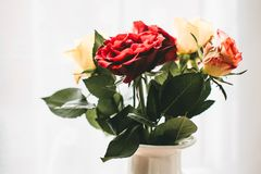 Red and White Flowers With White Vase Stock Image
