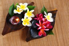 Red and white frangipani flower with candle. Spa & aromatherapy concept Stock Photos