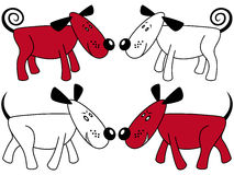 Red and white funny dogs Stock Photo