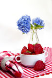 Red and White Gingham Mat, Strawberries Royalty Free Stock Image