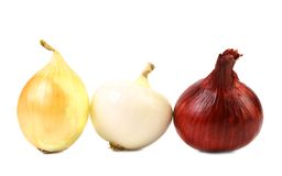 Red white gold onion bulbs Royalty Free Stock Photo