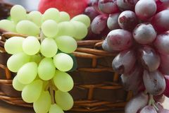 Red and white grape branch in a basket.  stock photography
