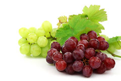 Red and white grapes Stock Photography