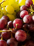 Red and white grapes Stock Photos