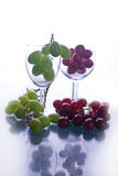 Red and white grapes. In glasses against white background royalty free stock images
