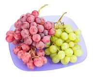 Red and white grapes bunches on blue plate Royalty Free Stock Images