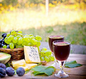 Red, white grapes in focus Stock Photography