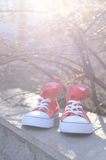 Red and white gym shoes Royalty Free Stock Image