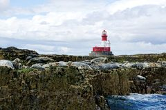 Red And White Lighthouse, Seals On Rocks Stock Images