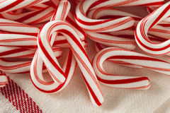 Red and White Mini Candy Canes Stock Photography