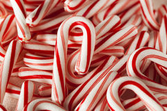 Red and White Mini Candy Canes Royalty Free Stock Image