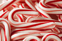 Red and White Mini Candy Canes Royalty Free Stock Photography