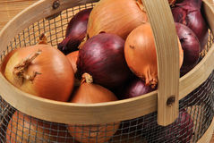 red and white onion in a basket Royalty Free Stock Photography