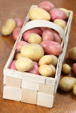 Red and white organic potatoes Stock Photo