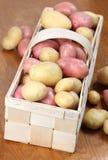 Red and white organic potatoes Stock Photo