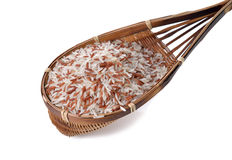 Red and white organic rice in bamboo dipper on white Royalty Free Stock Images