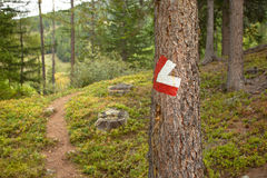 Red and white path sign painted in a stone inside a woods, in a Stock Images