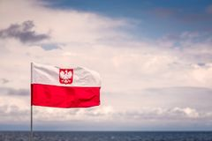 Red and white Polish flag. With national eagle emblem fluttering in the wind on a seaside stock photography