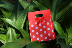 Red and white polka dot gift container Stock Images