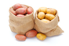 Red and white potatoes in burlap sack Royalty Free Stock Image