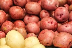 Red and White Potatoes ready for dinner stock photos