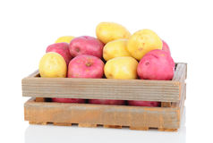Red and White Potatoes in Wooden Crate Stock Photography