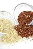 Red and white quinoa grain in bowls Royalty Free Stock Images