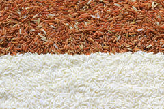 Red and white rice grains Stock Images
