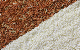 Red and white rice grains Royalty Free Stock Photos