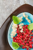 Red and white ripe currant on a blue plate. Dark wood background.  Royalty Free Stock Images