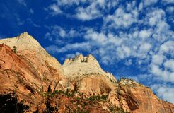 Red and white rock formations in Zion Canyon Royalty Free Stock Image
