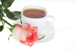Red white rose and cup of tea Royalty Free Stock Photo
