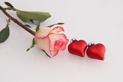 Red and white rose and hearts. Red and white rose and red hearts Royalty Free Stock Photography