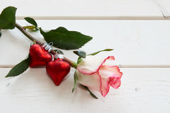 Red and white rose and hearts. Red and white rose and red hearts Stock Photos
