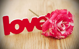 Red-white rose and scattered flower petals and the word love on Stock Photos