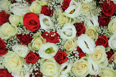 Red and white roses in a bridal bouquet. Red and white roses in a floral wedding centerpiece Royalty Free Stock Photography