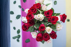 Red and white roses on colorful painted wood background Royalty Free Stock Photos