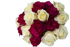 Red and white roses posy. Posy of deep pink and white roses isolated on white off centre position with space for messages Royalty Free Stock Photos