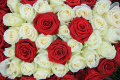 Red and white roses in a wedding arrangement. Red and white roses in a bridal floral arrangement Stock Photos