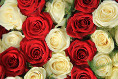 Red and white roses in a wedding arrangement Royalty Free Stock Photos